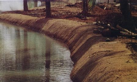 Stream Bank Protection using Coir Geotextile