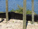 silt fence at dock