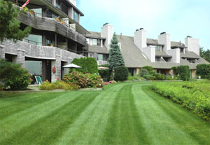 homeowners association and condo landscaping